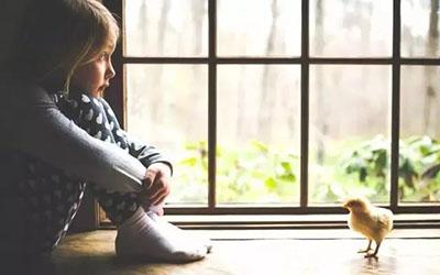 成都哪家医院治疗自闭症好?成都西南儿童医院自闭症康复案例